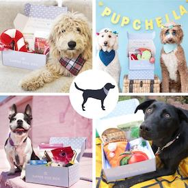Monthly Dog Gift Box for Boyfriend's Parents