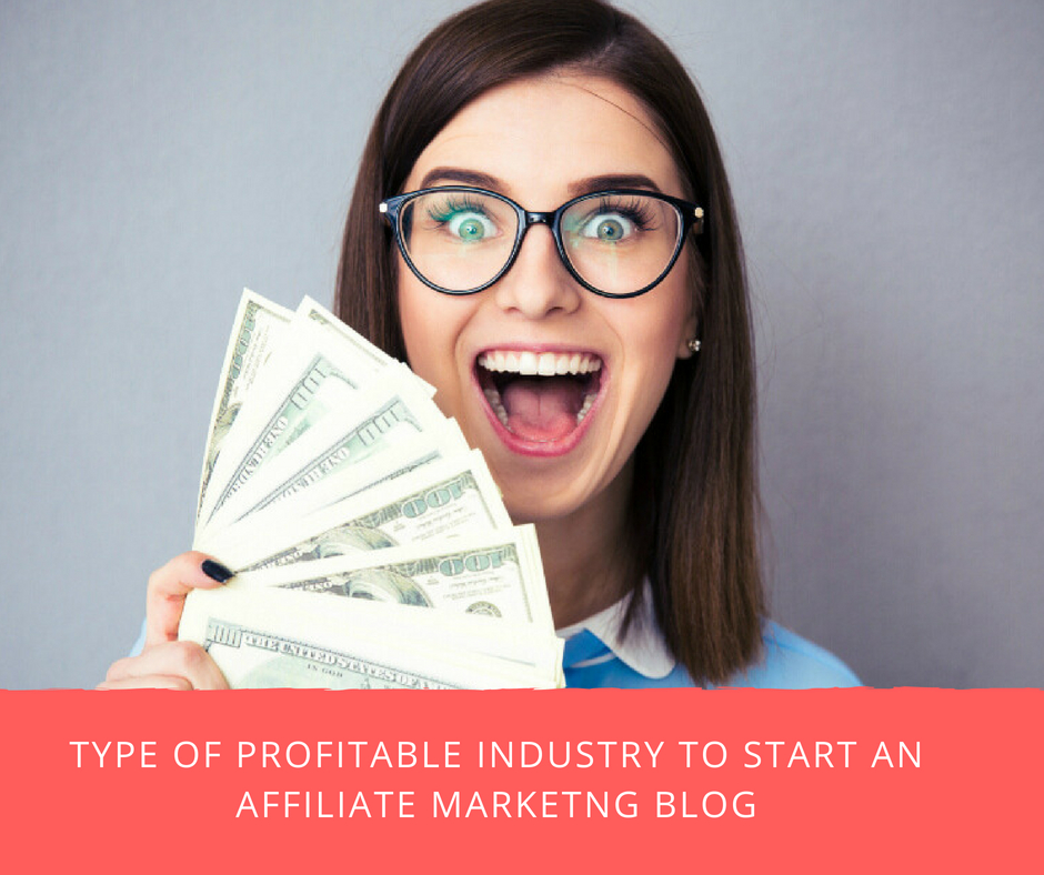 post13 - Most Profitable Industry to Start An Affiliate Marketing Blog