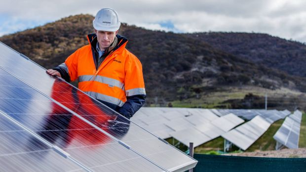 Site manager Nick Wain at the Royalla Solar Farm, near Canberra.