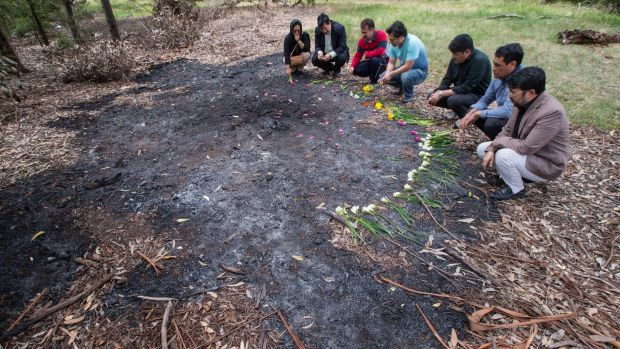 Members of the Afghan Community lay flowers at the site where Khodayar Amini self-immolated in a park in Dandenong.