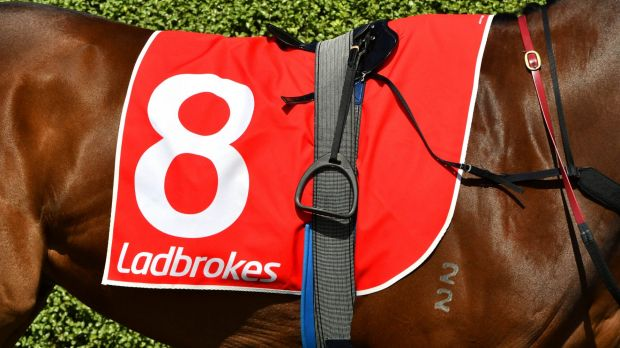 Ladbrokes Coral chief executive James Mullen says net revenue in Australia is up 67 per cent.