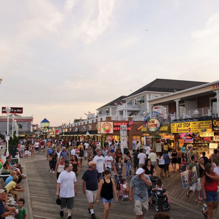 Ocean_City_MD_Boardwalk_Fox