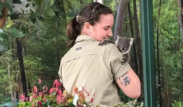 wild life sydney zoo koala naming