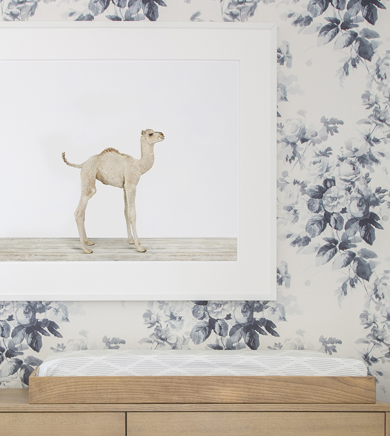 cu-house-of-hackney-nursery-wallpaper-baby-animal