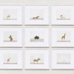 Baby-animal-prints-nursery-art-3.php