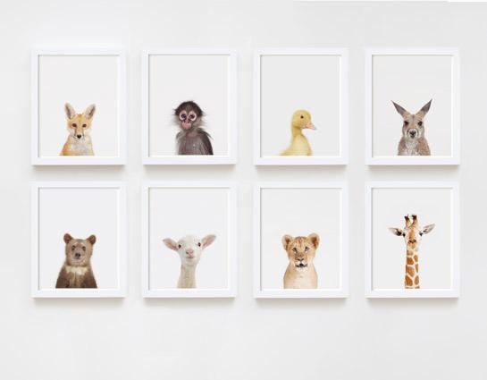 baby-animal-prints-faces-crown-nursery-decor-05