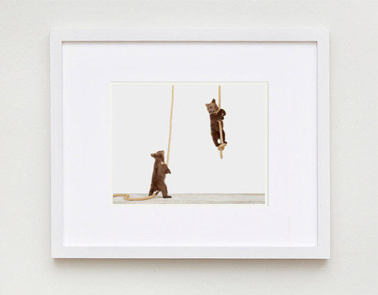 baby-animal-prints-nursery-art-1.php