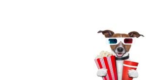 Popcorn puppy