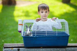 Boy with Rabbit Cage