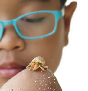 Child with hermit Crab
