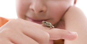 Boy with tiny frog