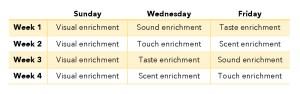 The Animal Store Bird Enrichment Schedule