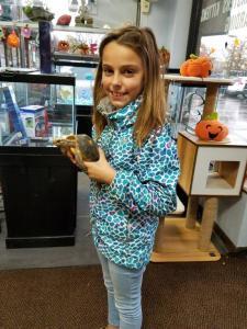 Animal Store Red Foot Tortoise