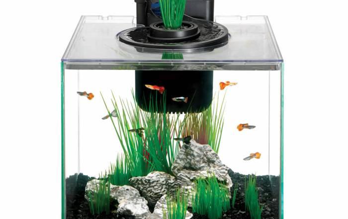 Aqua Springs 11 Aquarium