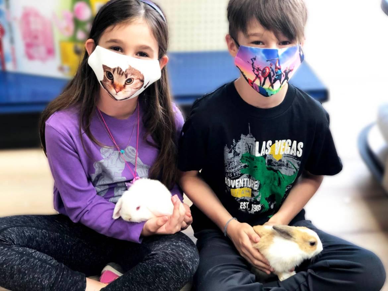 Bunnies - happy pet owners