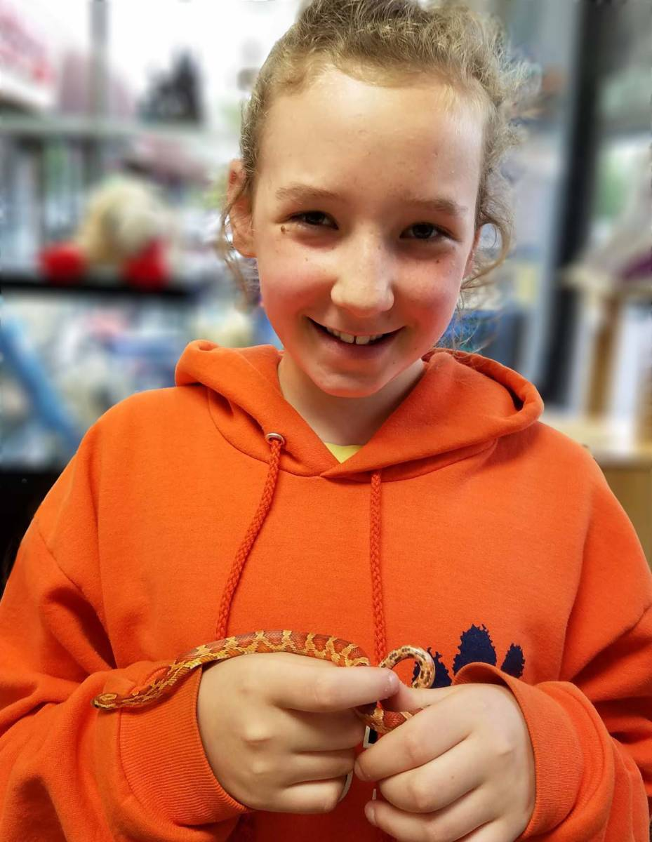 The Animal Store Sabine and her Corn Snake