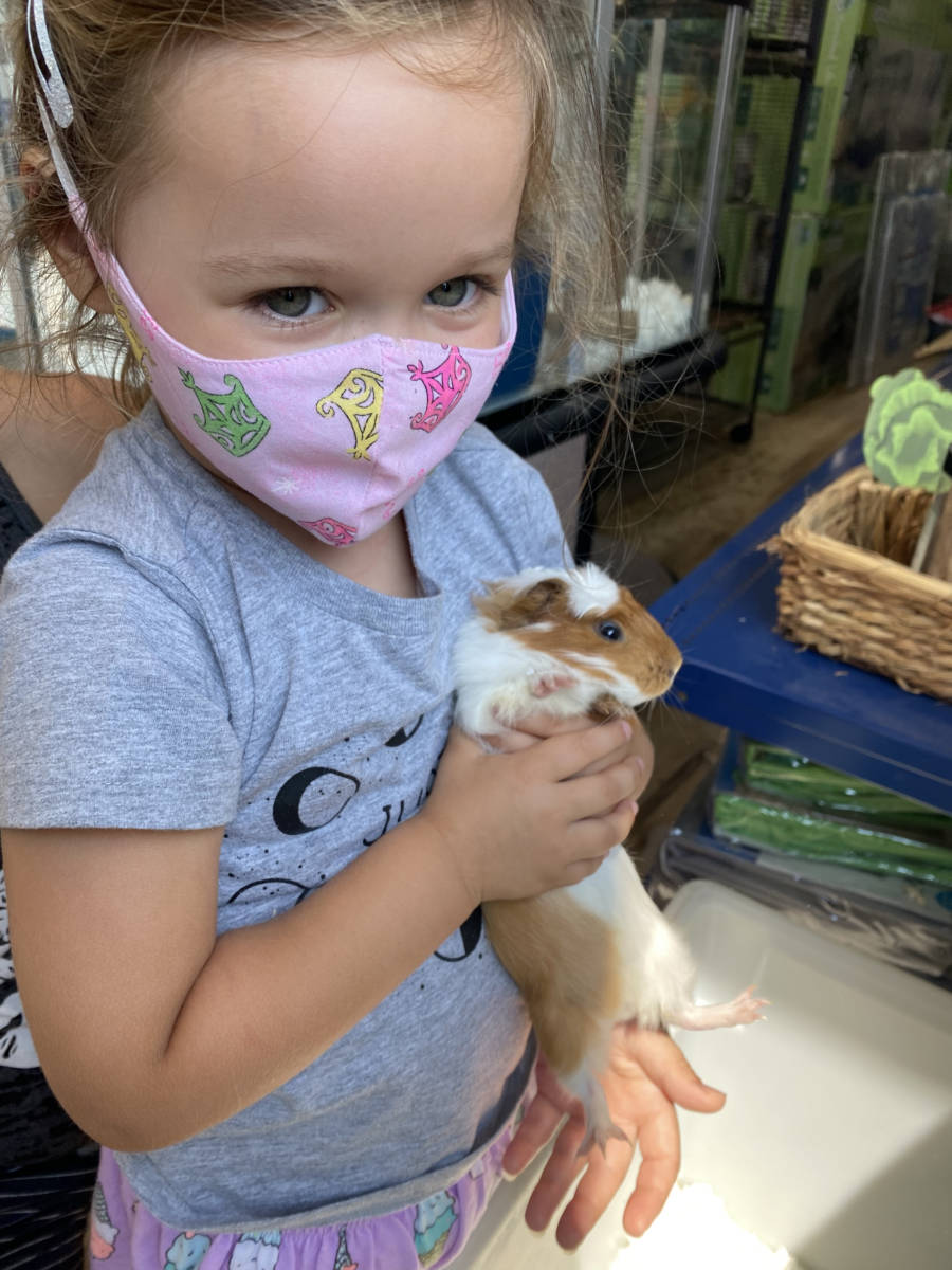 The Animal Store Vika and guinea pig
