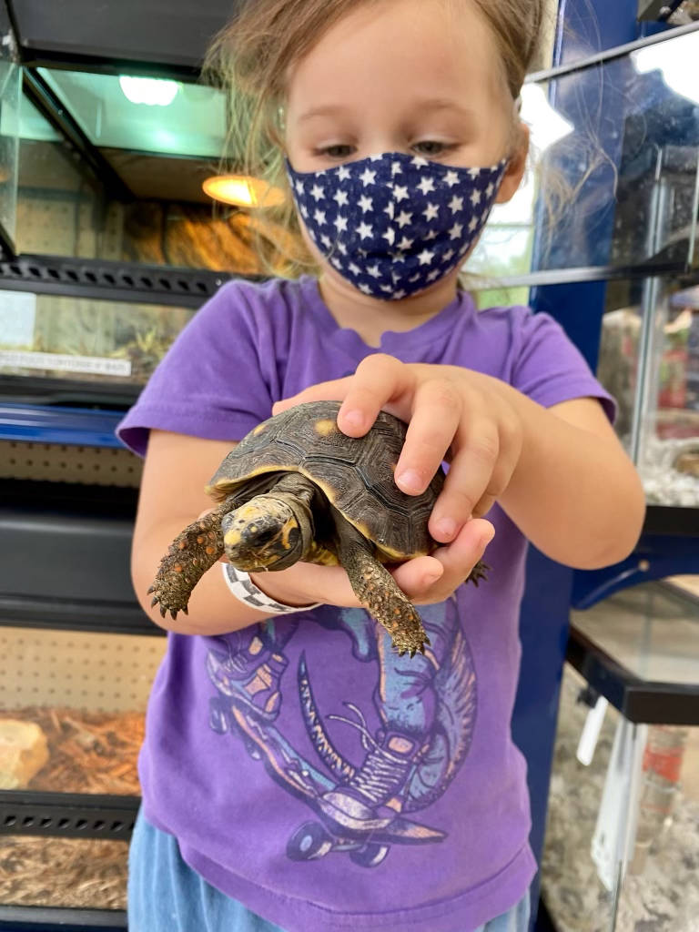 Vika and the red-footed tortoise