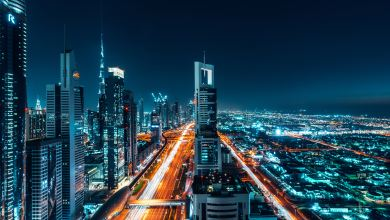 Latest International News : UAE to set up driving training centers in India