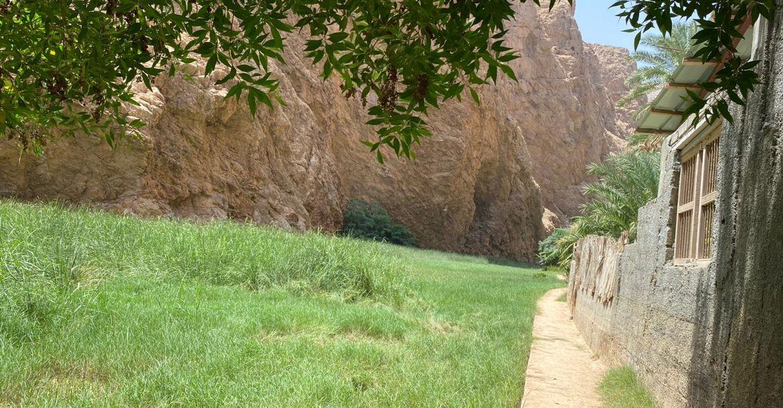 Wadi Shab / Tiwi