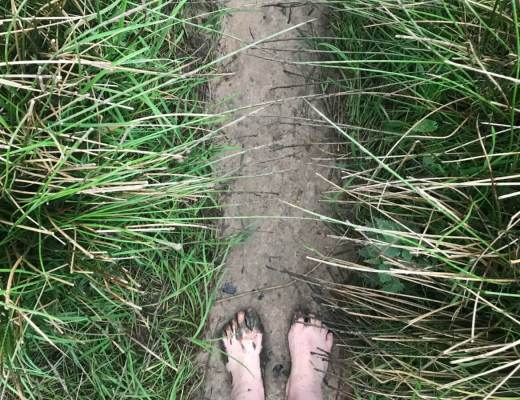 Blotevoetenland Erve Brooks | Thearie