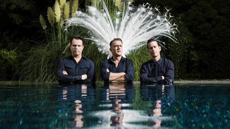 The Peacocks