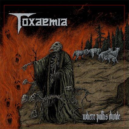 Toxaemia - Where Paths Divide