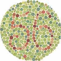 בדיקת עיוורון צבעים