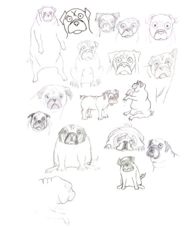 Pug Doodles (23x20cm, 9x12in) Graphite on Paper