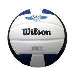 Wilson-Volleyball-2