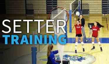 4-12-17-WEBSITE-Setter-training