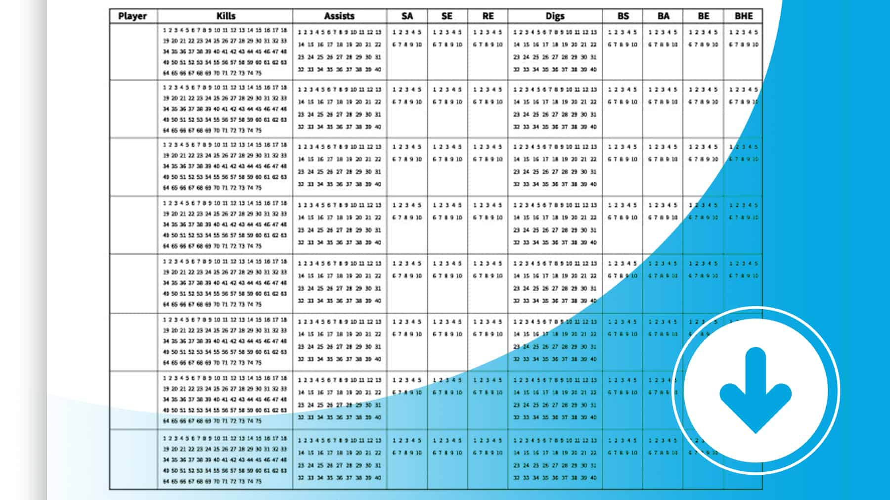 Zany Volleyball Stat Sheets Printable