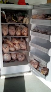 Chickens in the Freezer
