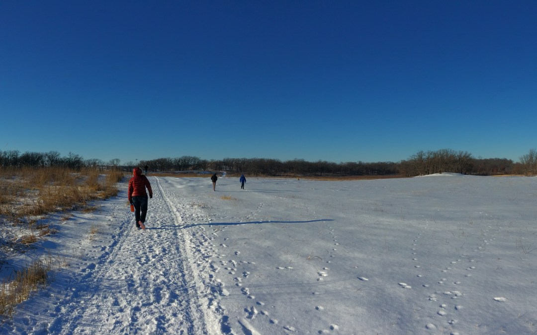 Winter Walk in Glacial Park, Illinois