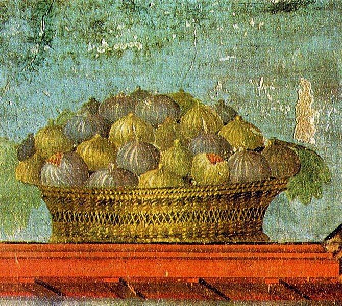 Gathering The Fruit The Symbol Of The Fig Tree In Mark 111214