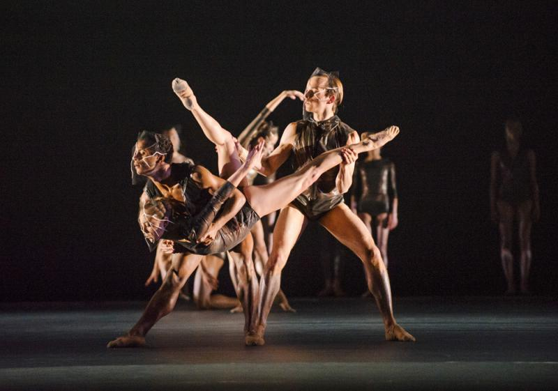 Wolf Works at the Royal Ballet