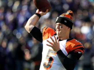 Falcons Have Signed a Backup QB: Report