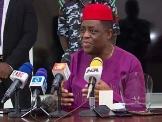 Boko Haram forcefully converting Nigerians to Islam in Niger - Fani Kayode alleges