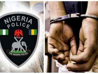 Police arrest native doctor, 18 others in Rivers community