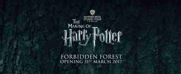 First Look at the 'Forbidden Forest' at Warner Bros. Studio Tour
