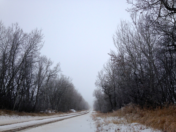 the artyologist- image of ethereal winter beauty country road