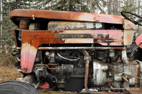the artyologist- image of rusted old massey ferguson tractor