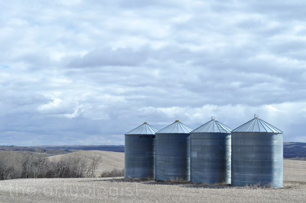 the artyologist- image of a graineries on a cloudy day the sentinels of the prairies