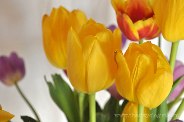 the artyologist- image of tulips