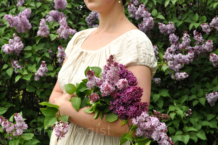 image of seersucker dress and lilacs the artyologist