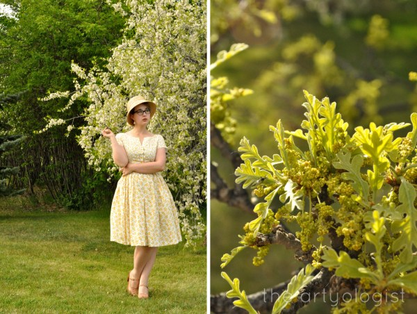 image of flowering plum tree and floral dress the artyologist