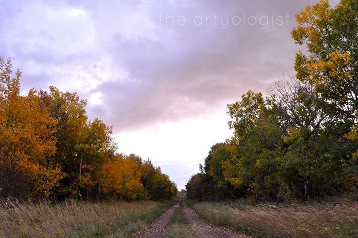 Happy (Canadian) Thanksgiving, Fall Seasons, the artyologist