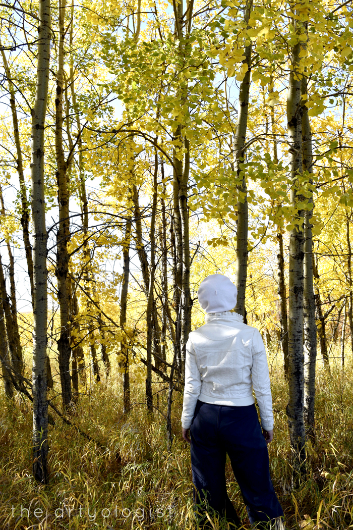 How to Colour Match Your Surroundings,among the aspens, the artyologist