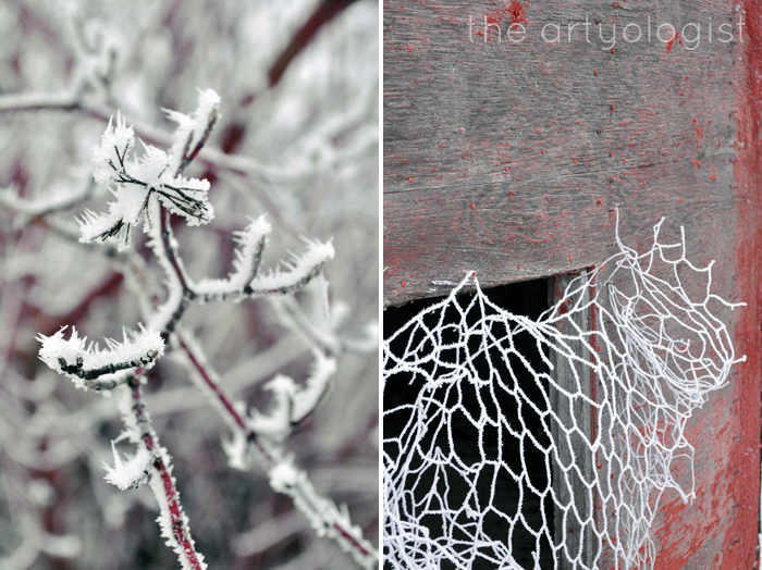chicken-wire-and-red-branch, the artyologist
