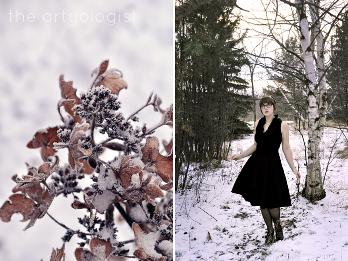 woodland queen, the artyologist